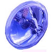 GL-PAR36B Replacement Globe