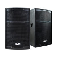 AVE ULTRA12-DSP Pair